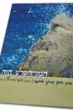 המין הסלע הזה- הרבנית דינה הורביץ