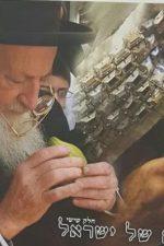 אביהם של ישראל -חלק ו